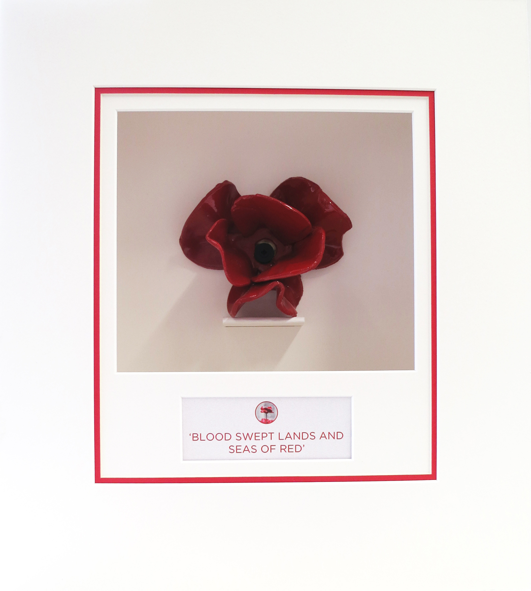 Bespoke frame for remembrance ceramic poppies